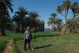 Nile valley farmer.
