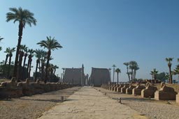 Luxor Temple Sphinx avenue.