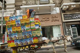 Donkey cart transport, Cairo, street.