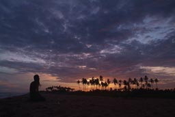 Sunset Grand-Popo, Benin, palms and beach.