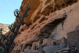 Youga-Piri, Tellem graneries in cliff, Dogon Land Mali.