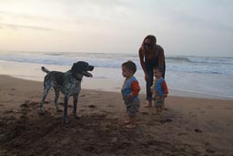 Kelb k'bir, big black and whight dog, Hasna and twins, beach Dar Bouazza, south of Casablanca.