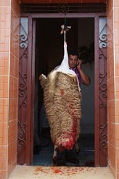 Mutton hung up in doorway. Aid el-Khebir.