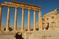Palmyra. Temple.