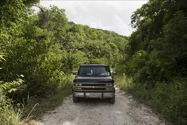 On jungle roads along the Guatemalean border to El Pilar, Maya site in Belize..
