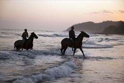 Riders take their horses swimming in the Pacific Ocean, Cambutal, Panama.