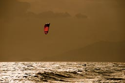 Lonley on glisten ocean. Kite surfing, Punta Chame.