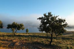 Reserva National de Cijara lake and morning mist