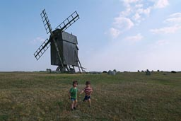Boys and the windmill.