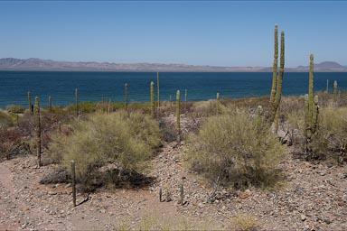 Baja California Desert Photography and Journey New to Mexico enter Baja California