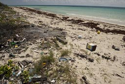 Rubbish piles up, Costa Maya. There is a lot of trash on this beach.