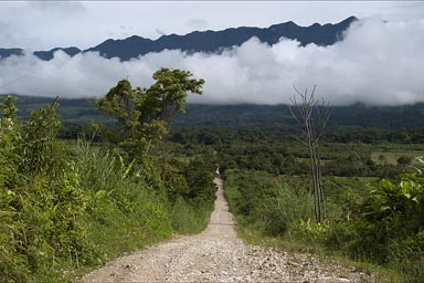 The Lacandon jungle around, clouds hang low. The Montes Azules Biosphere Reserve.