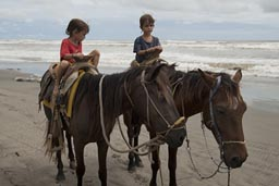 Boys, horses, Pacific Beach, first riding lesson.