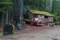 Old truck and house in woods.