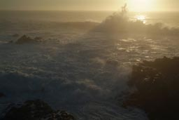 White spume, sunset California coast.