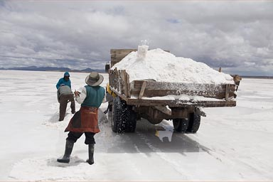 Mining welt salt, sells for 4 B$ as ooposed to dry salt 15 B$, for 50 kg.