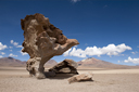 Tree Rock on altiplano, Bolivia.