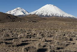 Volcanoes Pomerape and Parinacota, high up, northern Chile.