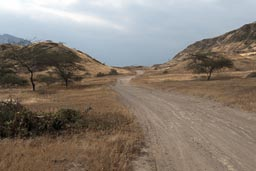 Land inwards past Pampa Grande on gravel roads, Northern Peru.