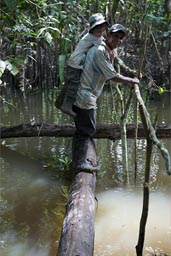 Daniel on Ribert's back. A stream is crossed on a trunk of a fallen tree, Peruvian jungle,
