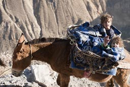 Daniel and David on mule, way up Colca Canyon.