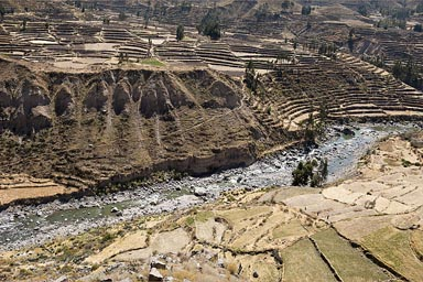 First view of Colca Valley, Inca terraces still kept the same old way. Peru.